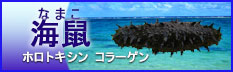 namako_banner